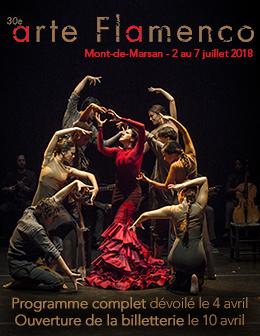 image : Présentation programme Arte Flamenco 2018