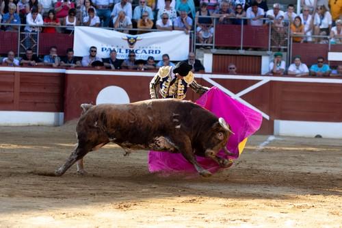 image : Torero face au Toro dans les arènes